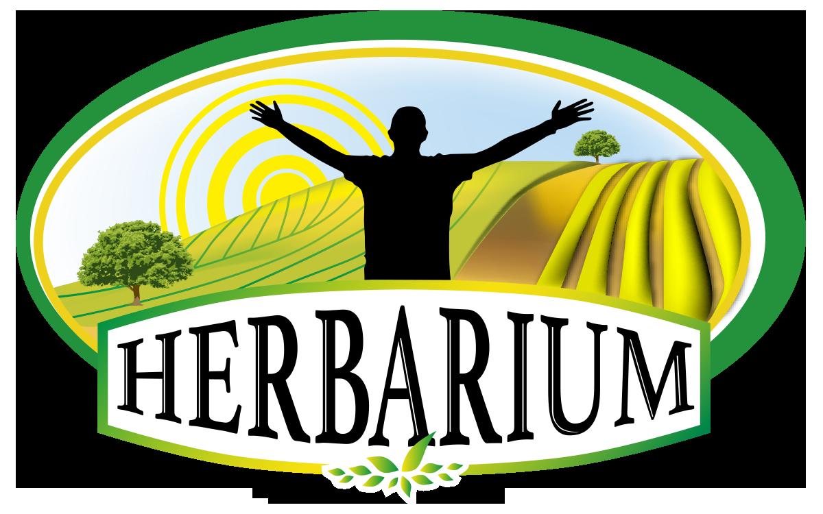 Logo Herbarium 2017